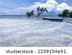 the waves of the sea produce... | Shutterstock . vector #1259154691