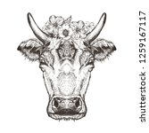 vector image of a cow head. cow ... | Shutterstock .eps vector #1259167117