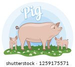 pigs. little piglets with... | Shutterstock .eps vector #1259175571