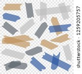 adhesive tape. transparent... | Shutterstock .eps vector #1259205757