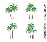 a palm tree vector set. | Shutterstock .eps vector #1259236924