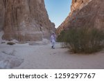 wadi watir  sinai   egypt   may ... | Shutterstock . vector #1259297767