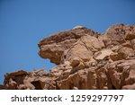 wadi watir  sinai   egypt   may ... | Shutterstock . vector #1259297797