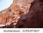 wadi watir  sinai   egypt   may ... | Shutterstock . vector #1259297827