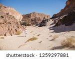 wadi watir  sinai   egypt   may ... | Shutterstock . vector #1259297881