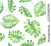 green tropical monstera leaves... | Shutterstock . vector #1259398294