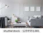 real photo of an elegant living ... | Shutterstock . vector #1259551381