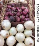 different types of onions in... | Shutterstock . vector #1259593021