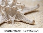 Starfish On Each Other The Big...