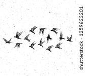 set of black hand drawn strokes ... | Shutterstock .eps vector #1259623201