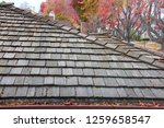 wood shingle roof on house ... | Shutterstock . vector #1259658547