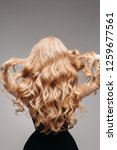 back view of unrecognizable... | Shutterstock . vector #1259677561