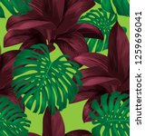 tropical  leaves  monstera leaf ... | Shutterstock .eps vector #1259696041