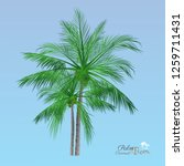 vector of palm tree icons on... | Shutterstock .eps vector #1259711431