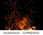 flame of fire with sparks on a...   Shutterstock . vector #1259823421