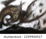 girl flying in her dreams | Shutterstock . vector #1259904517
