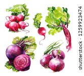 Watercolor Vegetable Set ...