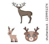 isolated object of elk and head ... | Shutterstock .eps vector #1259951374