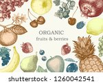 hand drawn illustration with... | Shutterstock .eps vector #1260042541