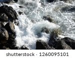 surf  waves  gout  at the... | Shutterstock . vector #1260095101