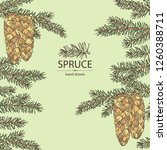 background with spruce  branch... | Shutterstock .eps vector #1260388711