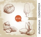 hand drawn sketch style nuts... | Shutterstock .eps vector #1260439024