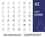 fruit icons set. collection of... | Shutterstock .eps vector #1260502207