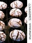 fresh baked chocolate crinkle... | Shutterstock . vector #1260599977