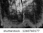 abstract background. monochrome ... | Shutterstock . vector #1260760177