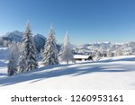 Winter Nature. Landscape With...