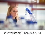 portrait of a female researcher ... | Shutterstock . vector #1260957781