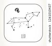 leo hand drawn zodiac sign... | Shutterstock .eps vector #1261010437