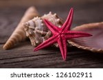 Close Up Of Red Starfish...