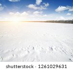 winter landscape. snowcovered... | Shutterstock . vector #1261029631