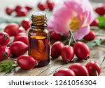 rose hips and rose hip seed oil ... | Shutterstock . vector #1261056304