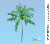 vector of palm tree icons on... | Shutterstock .eps vector #1261124281
