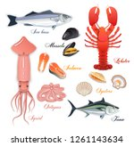seafood page design with mussel ... | Shutterstock .eps vector #1261143634