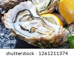 fresh open oysters with lemons... | Shutterstock . vector #1261211374