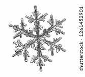 snowflake isolated on white... | Shutterstock .eps vector #1261452901