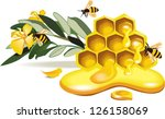 bees and honey and flowers