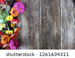 many colored flowers on a... | Shutterstock . vector #1261634311
