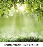 spring or summer season... | Shutterstock . vector #126175715