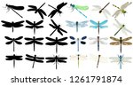 isolated  flying dragonfly ... | Shutterstock .eps vector #1261791874