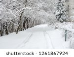 winter landscape with snowy... | Shutterstock . vector #1261867924