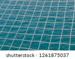 mesh is what is built into a... | Shutterstock . vector #1261875037
