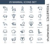mammal icons. Trendy 25 mammal icons. Contain icons such as moose, rabbit, caveman, sheep, hog, giraffe, cow, bear, horse, seal, elephant, lion. mammal icon for web and mobile.