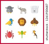 9 wildlife icon. vector... | Shutterstock .eps vector #1261930687
