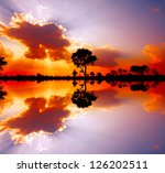 beautiful african sunset... | Shutterstock . vector #126202511