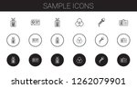 sample icons set. collection of ... | Shutterstock .eps vector #1262079901