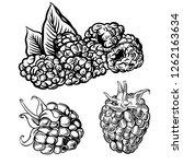 illustration set of drawing... | Shutterstock .eps vector #1262163634